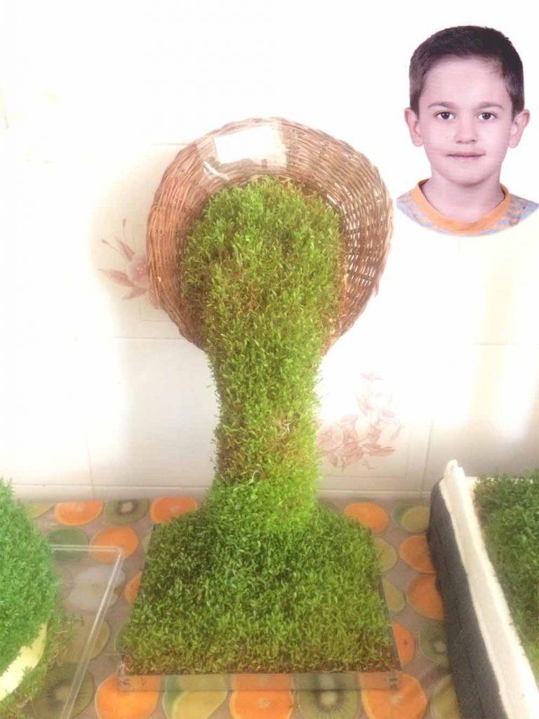 بنیامین خرمی-سبزه گیاهان دارویی-دبستان خرد داراب